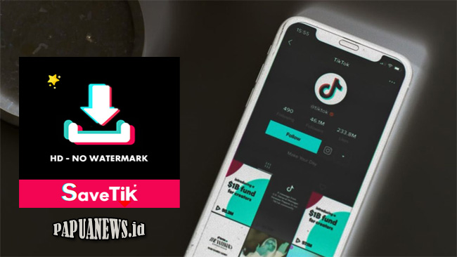 SaveTik - Download Video Tiktok HD Tanpa Watermark Terbaru 2021