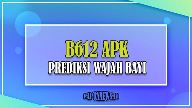 B612 APK Aplikasi Prediksi Wajah Bayi atau Anak Terbaru 2021